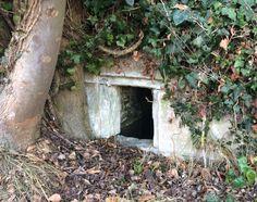 Descubriendo tesoros escondidos en #Arkaia #turismorural junto a #Vitoria #Gasteiz #accesible #ecologia #igersgasteiz #igerseuskadi @nekatur_euskadi @turismo_vitoria @toprural @agrotravel