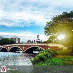 #Harvard --How do you make a great first impression?  #Job #VideoResume #VideoCV #jobs #jobseekers #careerservices #career #students #fraternity #sorority #travel #application #HumanResources #HRManager #vets #Veterans #CareerSummit #studyabroad #volunteerabroad #teachabroad #TEFL #LawSchool #GradSchool #abroad #ViewYouGlobal viewyouglobal.com ViewYou.com #markethunt MarketHunt.co.uk bit.ly/viewyoupaper #HigherEd @harvardu #harvardu