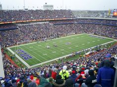 Ralph Wilson Stadium AKA New Era Field, Orchard Park, NY. I FINALLY stopped calling it Rich Stadium and they went and changed the name again!