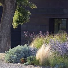Landscaping at our Sunset House starts this week and this is our inspiration pic.   | via Pinterest.