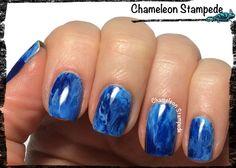 Chameleon Stampede Nail Blog: 3 Shades of Blue