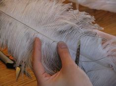 Making historical looking ostrich plumes