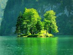 Green Tree Island, Konigssee, Germany