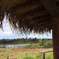 #cuiaba #cuiabamt #matogrosso #moto #photo #Instagram #photography #Lifestyle #Pics #PhotoOfTheDay #nature #natureza #landscape #heaven #cidades #PorDoSol #tarde #FimDeTarde #Sol #Sun #CentroCuiaba #hellcity #azul #sol #acorizal #Fazenda #Lago http://tipsrazzi.com/ipost/1509090148351085991/?code=BTxXX6Sgg2n
