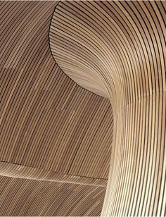 Timber ceiling at National Assembly for Wales by Richard Rogers ~ DesignDaily Network