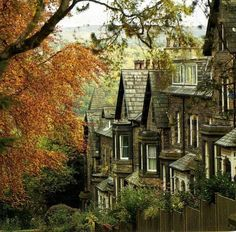 Ilkley, West Yorkshire I have walked up that hill and my (fairly fit), thighs…