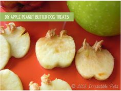 Apple Peanut Butter Dog Treats (irresistiblepets.net)