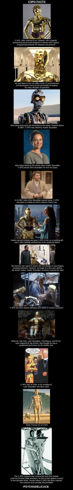C-3PO - funny pictures #funnypictures