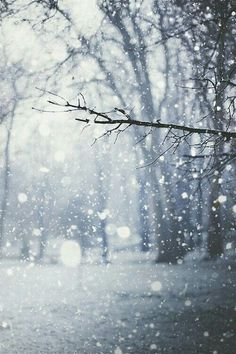 Droplets of falling snow