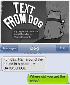 funny text messages sent