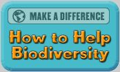 AMNH website with activities, information, and games for biodiversity