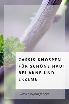 """Cassis - oder #Johannisbeere - wird auch """"das pflanzliche Kortison"""" genannt. Das liegt daran, dass es die selbe Wirkung hat, wie herkömmliches Kortison, nur OHNE Nebenwirkungen! Deshalb könnten Cassis-Tropfen super gut gegen #Akne und andere #Hautprobleme helfen!  Aber das ist längst nicht alles.  Wie Cassis auch gegen Stress, Müdigkeit und Gelenkbeschwerden hilft, kannst du im Artikel nachlesen.  #cassis #gemmotherapie #rubynagel #stress #schlaf #schmerzen #müde #kortison #heilpflanzen Vegan Beauty, Natural Cosmetics, Kraut, Body Lotion, Diy Beauty, Sustainability, Natural Beauty, Organic, Nature"""