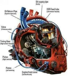 Car guy's version of the heart