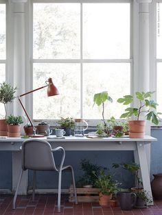 Indoor Plant Garden in the home office |  INDUSTRIELL i det blå | IKEA Livet Hemma – inspirerande inredning för hemmet