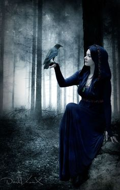Model : [link] Crow : [link] Background : [link] Texture from my personal stock Dark Forest 2 Gothic Art, Gothic Girls, Dark Beauty, Gothic Beauty, Dark Fantasy Art, Dark Art, Beltane, Dark Photography, Dark Forest