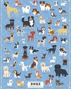 Dog puzzles - Dogs of America, 500 Piece Jigsaw Puzzle Animals And Pets, Baby Animals, Cute Animals, Cute Animal Drawings, Cute Drawings, Cute Dog Drawing, Dog Illustration, Illustrations, Illustration Simple