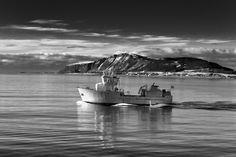 Mifjord