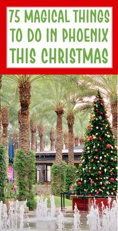 Christmas Activities Phoenix 2020 207 Best Travel Tips images in 2020 | Travel, Travel tips, Vacation