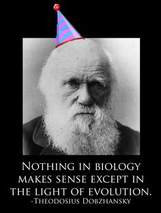 darwins theory of natural selection with the ideals of genetics What is the theory of evolution darwin's theory of evolution  powerpoint slideshow about 'from geneticsto  big idea: evolution what is natural selection.