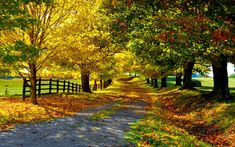 kostenlos Herbst Tapete