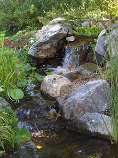 Waterfall created by True Pump in Denver, CO. Garden Waterfall, Waterfall Fountain, Ponds Backyard, Backyard Waterfalls, Garden Ponds, Farm Gardens, Water Gardens, Koi Fish Pond, Rain Garden