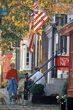 Old Town Alexandria, VA. All this needs us the pumpkins on the stoop. Alexandria Virginia, Old Town Alexandria, A Lovely Journey, Destinations, Virginia Usa, Old Dominion, Mountain Homes, Blue Ridge Mountains, God Bless America