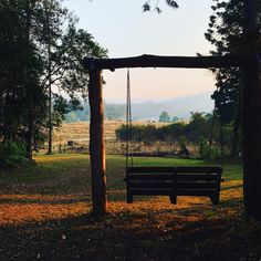 Swing bench situated at Shady Tree, Fairytale Cottage, Outdoor Baths, Cottage In The Woods, Stargazing, Natural Wonders, Night Skies, Outdoor Activities, Kayaking