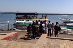 Best Cruise party in Goa - Tripoto Cruise Party, Cruise Boat, Best Cruise, Friends Laughing, Plant Species, Boat Tours, Online Tickets, Catamaran, Goa