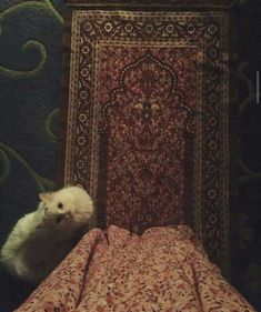 Islamic Wallpaper Hd, Quran Wallpaper, Cute Drawings Of Love, Muslim Couple Photography, Muslim Images, Cute Muslim Couples, Islamic Girl, Cute Baby Cats, Applis Photo
