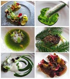 Noma wild food dishes