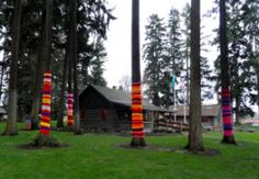 "Cool ""tree socks"" popping up all over Redmond!"