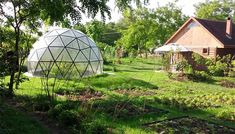 Geodesic dome Pollux
