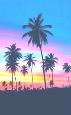 Summer Sunset Pictures, Photos, and Images Instagram Hacks, Photo Instagram, Summer Vibe, Summer Sunset, Sunset Beach, Miami Beach, Beach Sunsets, Summer Art, Ocean Beach