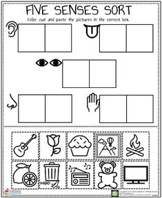 We prepared a funny and lovely five senses worksheet for preschool, kindergarten and firs graders. When you want to teach five senses to your kids or students you can freely use this worksheet. Its totally free to use for educational purposes. We prepared this five senses worksheet in pdf format and its very easy to download it. Five Senses Preschool, 5 Senses Activities, My Five Senses, Kindergarten Science, Preschool Learning Activities, Free Preschool, Pre K Worksheets, English Worksheets For Kids, Kindergarten Worksheets