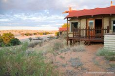 One of my fav camps in Kgalagadi Transfrontier Park - Kalahari Tented Camp - no fences so animals can walk right up to the tent! South Africa Safari, Plunge Pool, Run Around, Nature Reserve, Paladin, Tent Camping, Road Trip, National Parks, Cabin