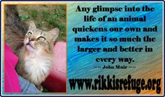 Any glimpse into the life of an animal quickens our own and makes it so much the larger and better in every way. (John Muir) - RIKKI'S REFUGE - www.rikkisrefuge.org