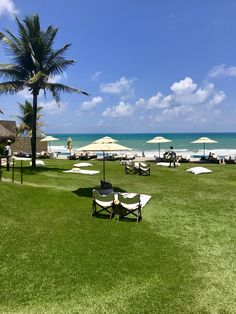 Kenoa Resort - Dicas de Viagem: Barra de São Miguel, Alagoas Resorts, Dolores Park, Travel Tips, Brazil, Places, Vacation Resorts, Beach Resorts, Vacation Places