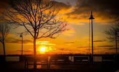By The Pier Morning Sunrise Wonderful Morning Yellow Beautiful