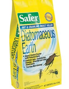 To control the ant and earwig plague in my backyard.  Curse you, mild winter.