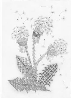 zentangle  dandelion flowers blowing in the breeze