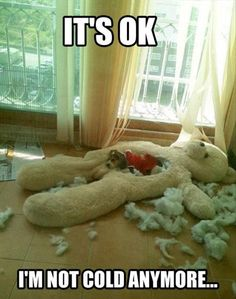 our JRT would totally do this...