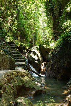 La Monkey Forest d'Ubud est une réserve naturelle située à Ubud (Bali). Elle abrite plus de 200 macaques crabiers (Macaca fascicularis). Quatre groupes de singes différents occupent chacun son propre territoire dans le parc. C'est une attraction très prisée par les touristes à Ubud. La Monkey Forest appartient au village de Padangtegal, où siège son conseil d'administration. La Padangtegal Wenara Wana Fondation gère la Monkey Forest, son but étant de préserver son caractère sacré et de…
