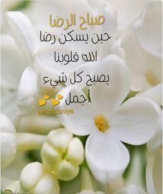 صباح الرضا .. Beautiful Morning Messages, Good Morning Images, Feelings Words, Arabic Funny, Funny Comments, Morning Wish, Morning Greeting, New Day, Projects To Try