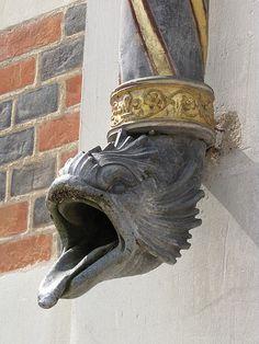 Gargoyle down spout:Schloss Blois, Wasserspeier an der Fassade des Flügels Ludwigs XII.