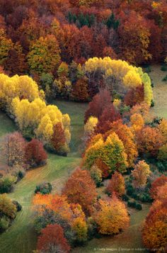 Beautiful autumn colours