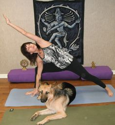 Sign up for Doga classes in Northern New Jersey at Morris K9 Campus