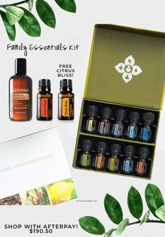 The Family Essentials Kit is a collection of ten nurturing essential oils, including six single oils and four blends. Patio Pavé, Hipster Cafe, Essential Oil Blends, Essential Oils, Succulent Bowls, Diy Design, Weatherboard House, Kitchen Organization Pantry, Cleaning Recipes