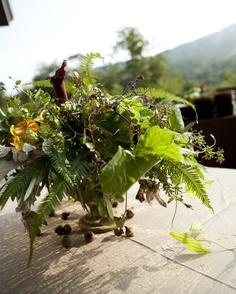 Bloom Flicka Designs , Vermont