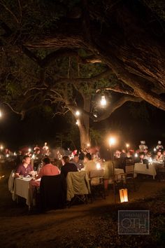 Lantern light over an African game preserve outdoor dinner. Event Planning: Wedding Concepts   Wedding Coordinator: Wedding Concepts   Floral Design: Nineteen Eighty Five. Photography: Christian Oth Studio - christianothstudio.com Read More: http://www.stylemepretty.com/2014/07/23/south-african-safari-rehearsal-dinner/