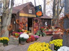 Halloween is not that far away. If you're considering a delicate porch decoration, it's time to start preparing. Halloween is a time every year for adults and children to relax. Craft Booth Displays, Store Displays, Halloween Porch Decorations, Thanksgiving Decorations, Universal Studios Halloween, Christmas Tree Farm, Fall Pictures, Fall Halloween, Halloween Pics